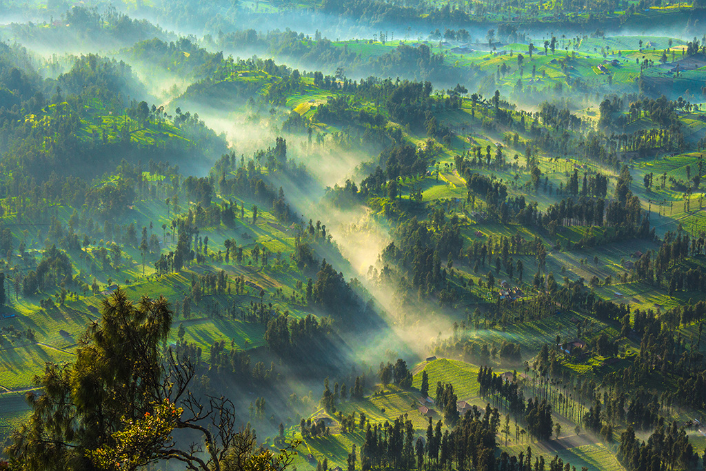 CemoroLawang, Bromo, Indonesia Sony A77   70-300mm F4.5-5.6 G SSM   Aperture : f/11   Shutter Speed : 1/80 sec   ISO : 50