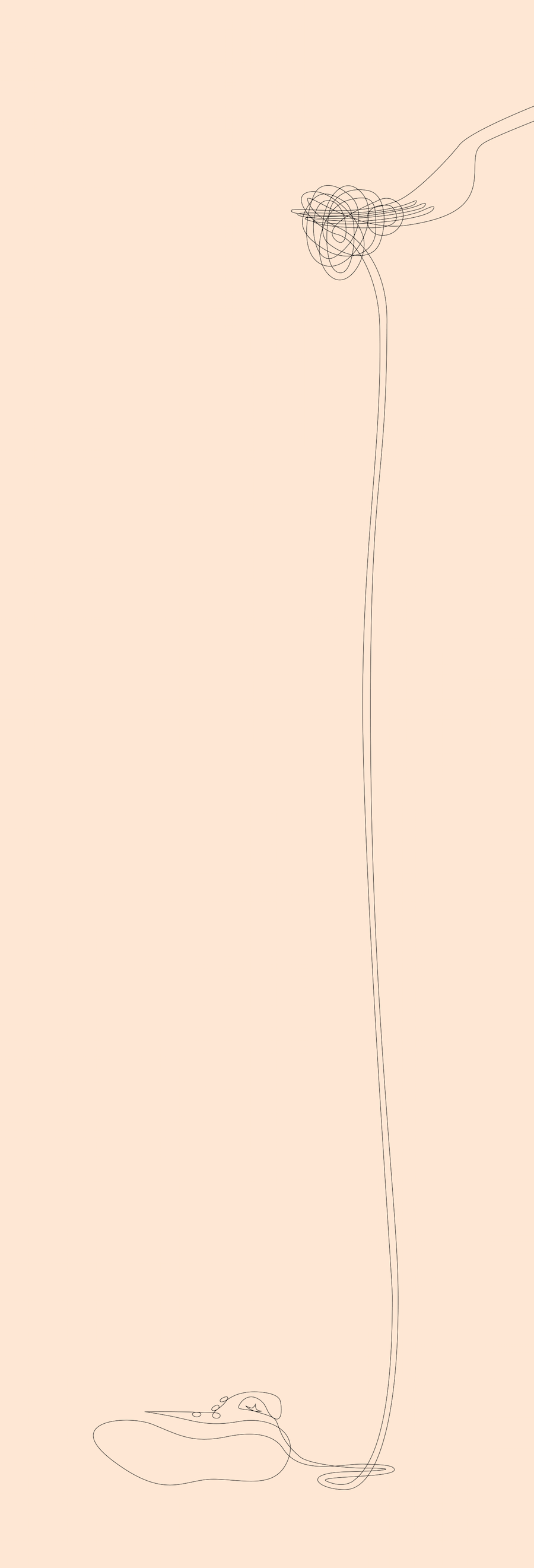 classic-sneakers-drawn-with-one-line11-900x2642